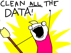 clean all the data!